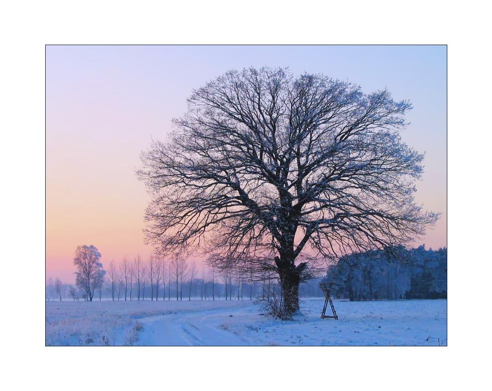 Kalter Winterabend