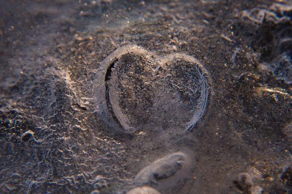 Kaltes Herz