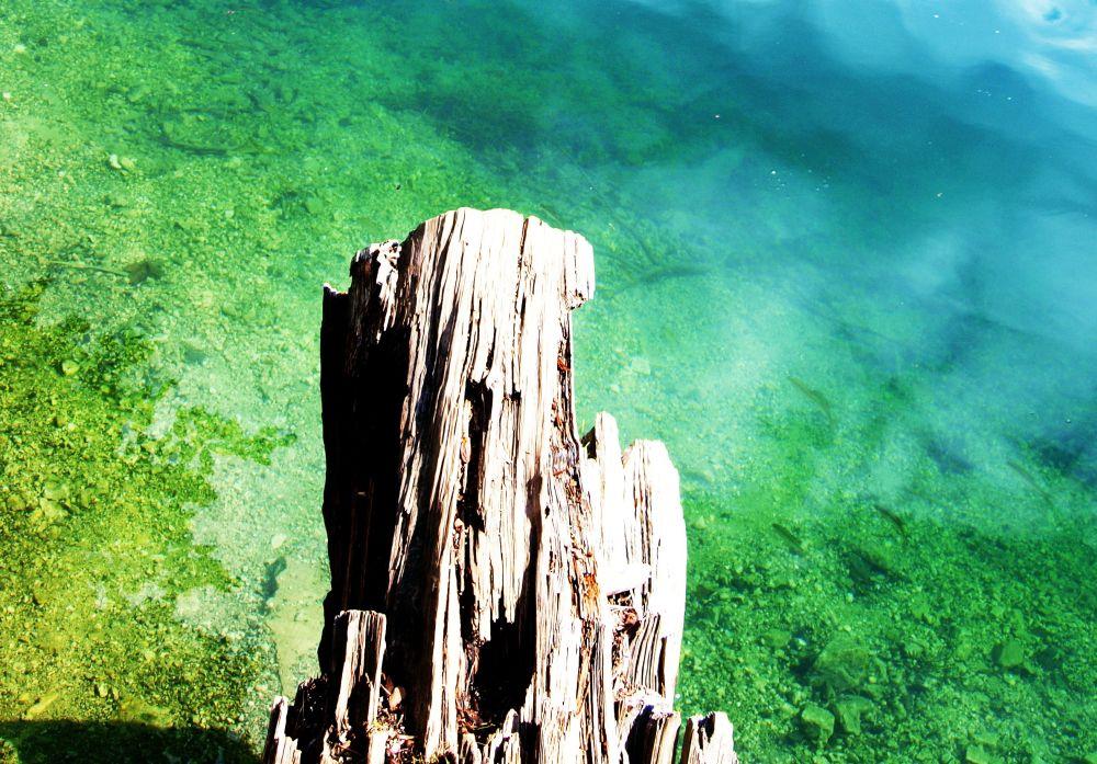 Kaltes,klares Wasser
