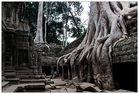 Kambodscha 59