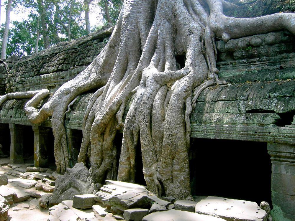 kambodschanische Impressionen I