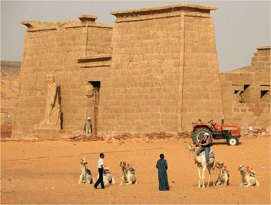 Kamel oder Traktor?