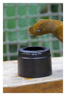 Kamerazubehör sollte stets gut kontrolliert werden!