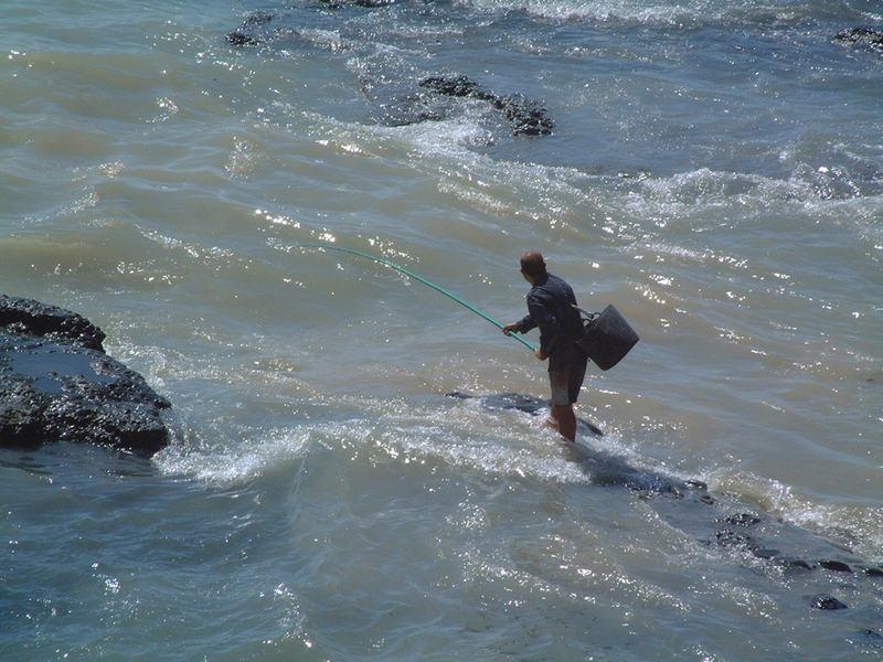 kamikaze fishing