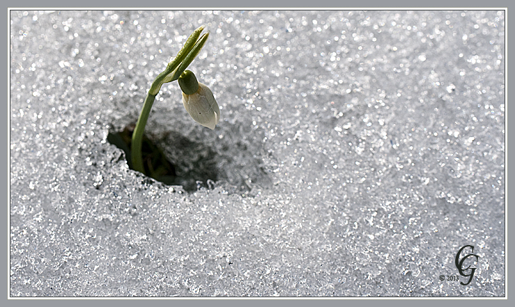 Kampf gegen Eis und Schnee