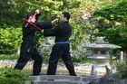 Kampf im japanischen Garten