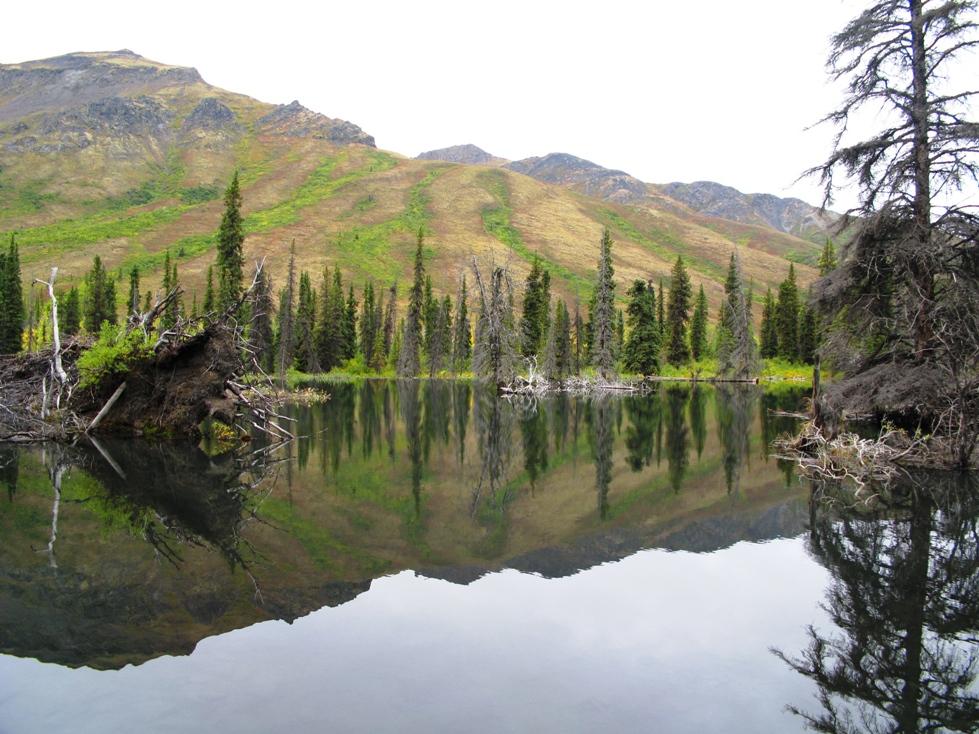 Kanada Yukon /Dempster Highway Thombstone