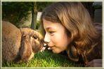 Kaninchen-Freundschaft