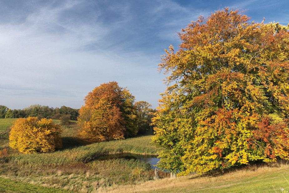 Kann der Herbst schöner sein ?