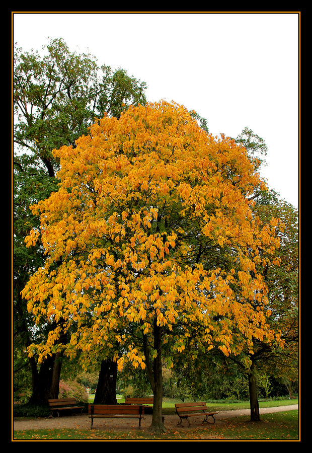 Kann man auch im Herbst