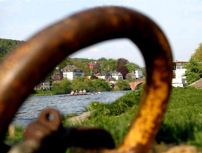 Kanuten am Neckar