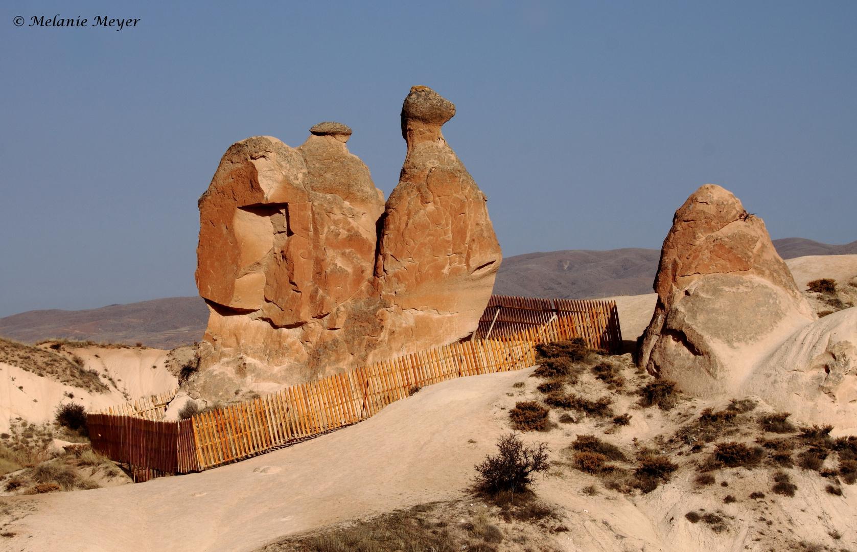 Kapadokya (4)