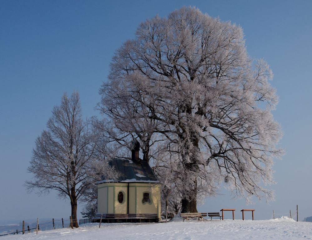 kapelle im winter foto bild architektur sakralbauten kapellen marterl wegkreuze bilder. Black Bedroom Furniture Sets. Home Design Ideas