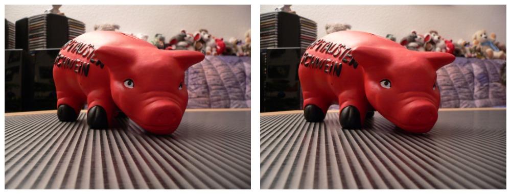 Kapitalistenschwein in 3D