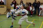 Karate LahnCup 2012 - IV