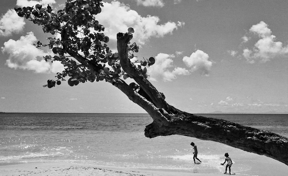 Karibik # 4