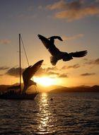 Karibik - British Virgin Islands