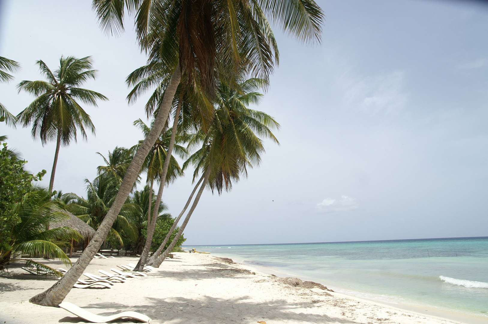 Karibik pur