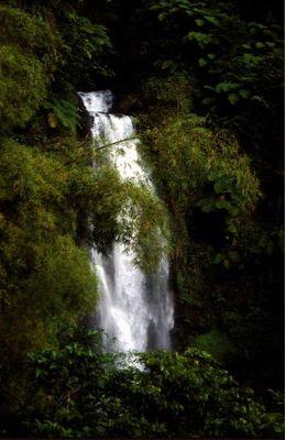 Karibik Wasserfall