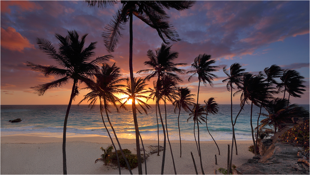 Karibikgruß