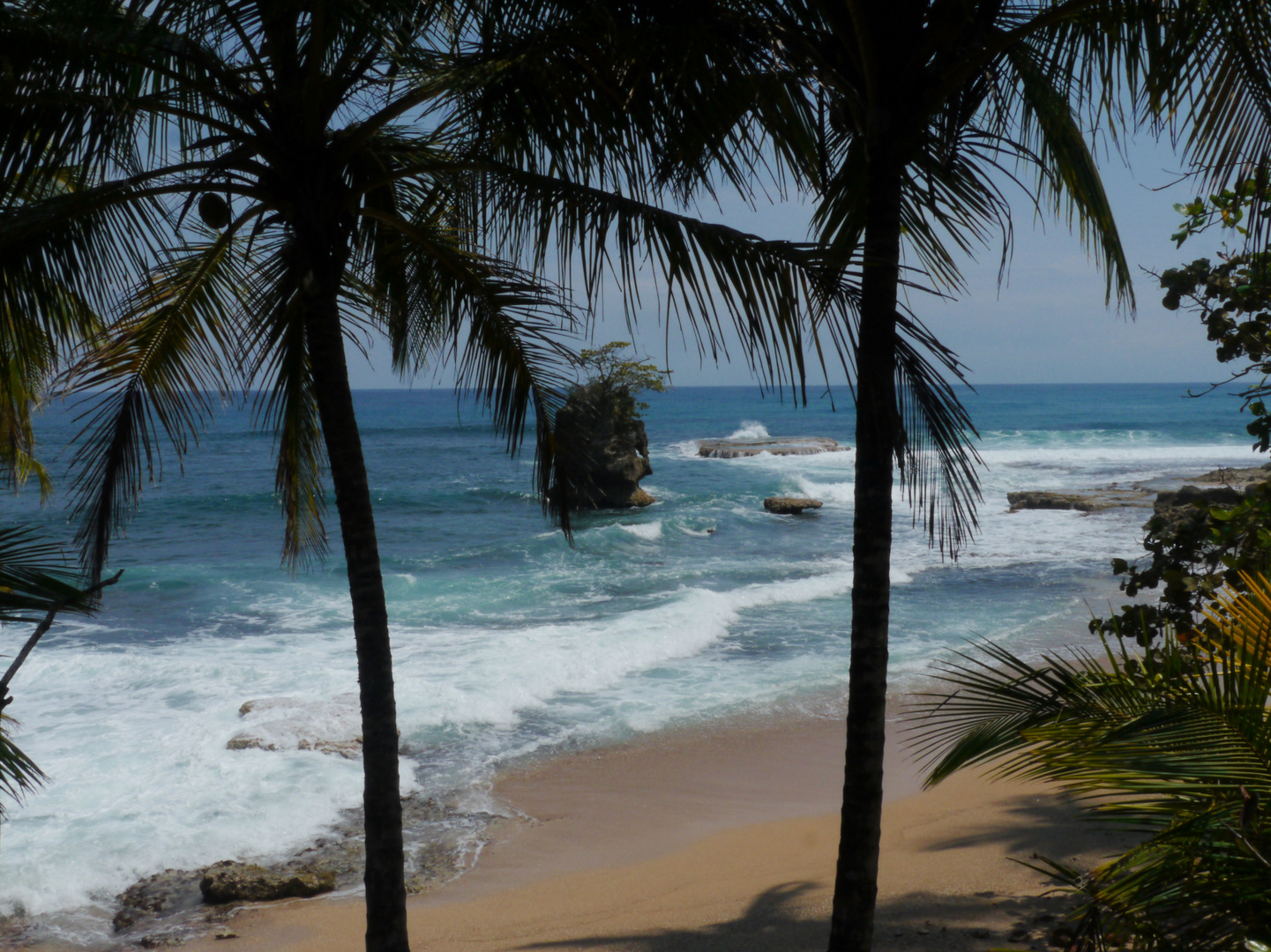 Karibikküste - Costa Rica