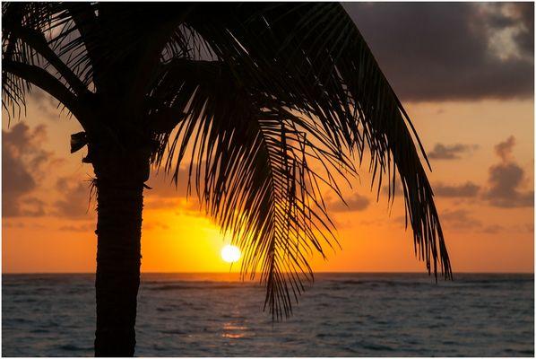 Karibischer Traum