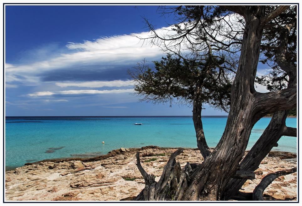 Karibisches Korsika