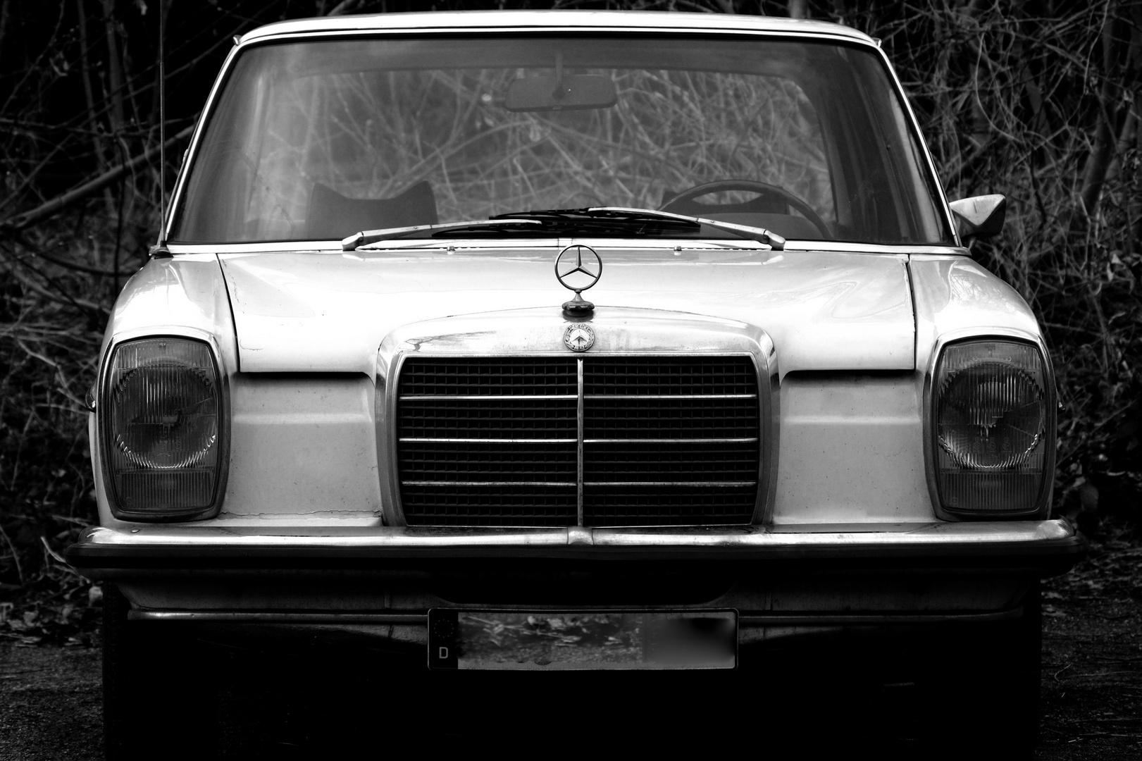 Karl das Auto