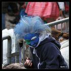 ...Karneval 2013