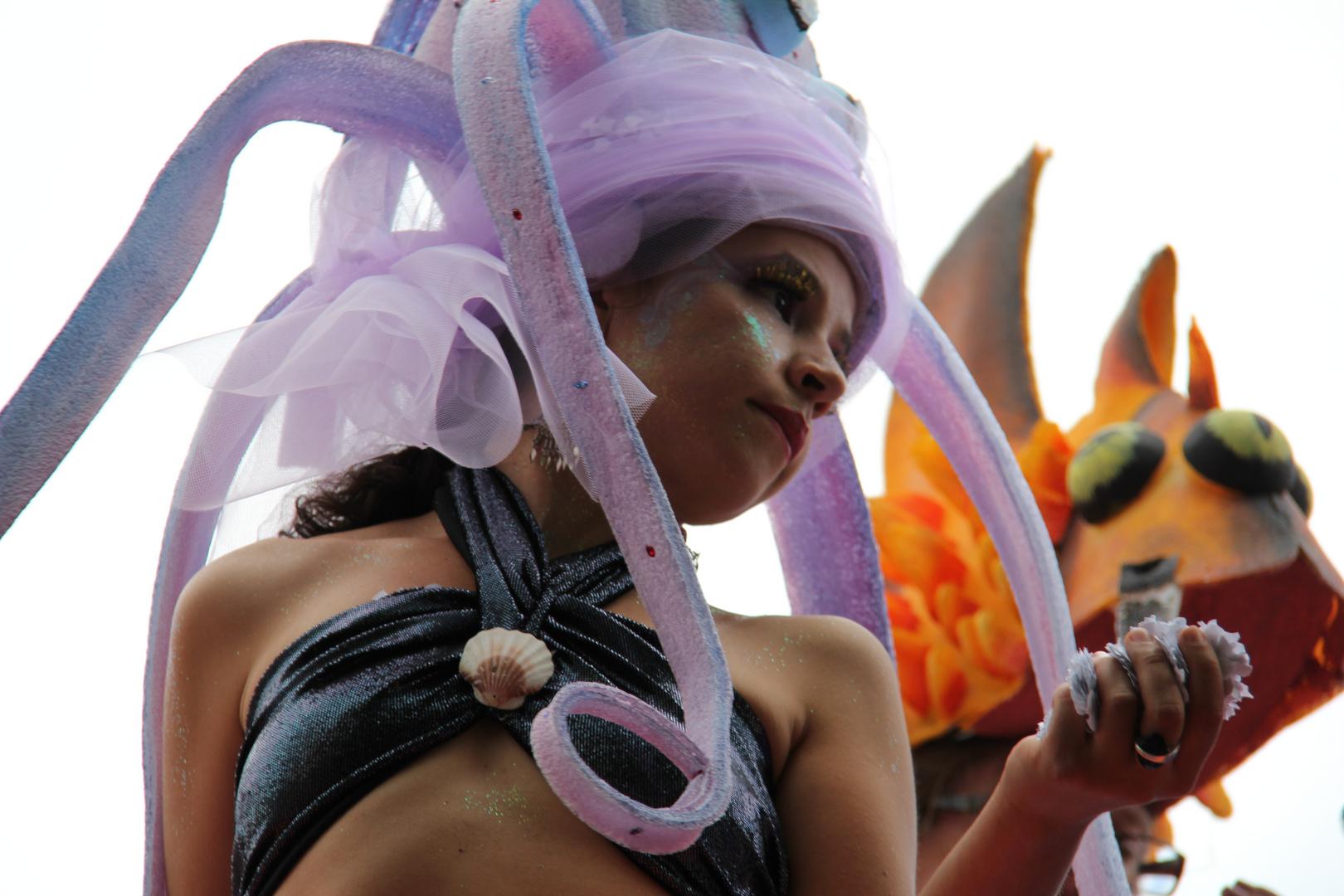 Karneval der Kulturen - 3