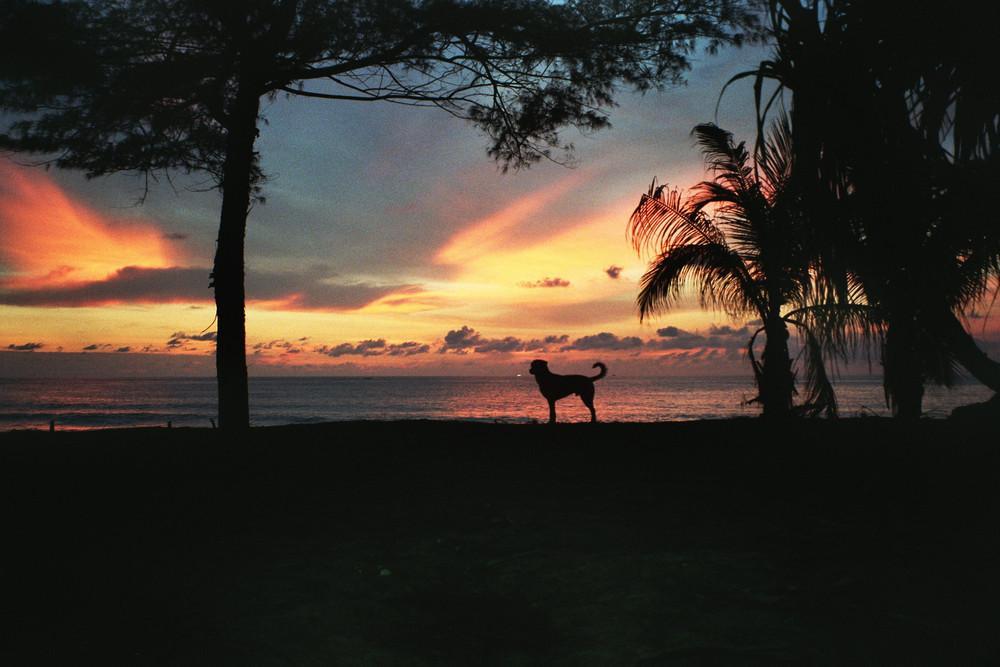 Karon Beach (analoge Aufnahme)