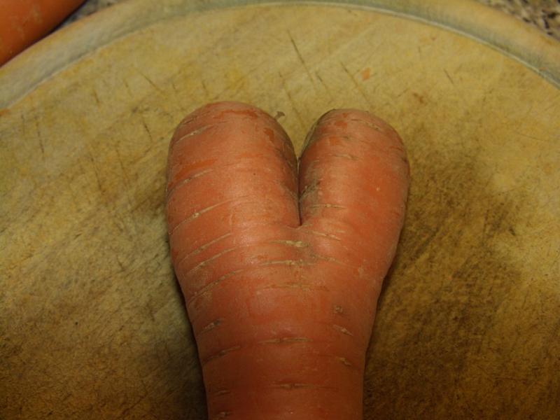 Karotte mit Herz