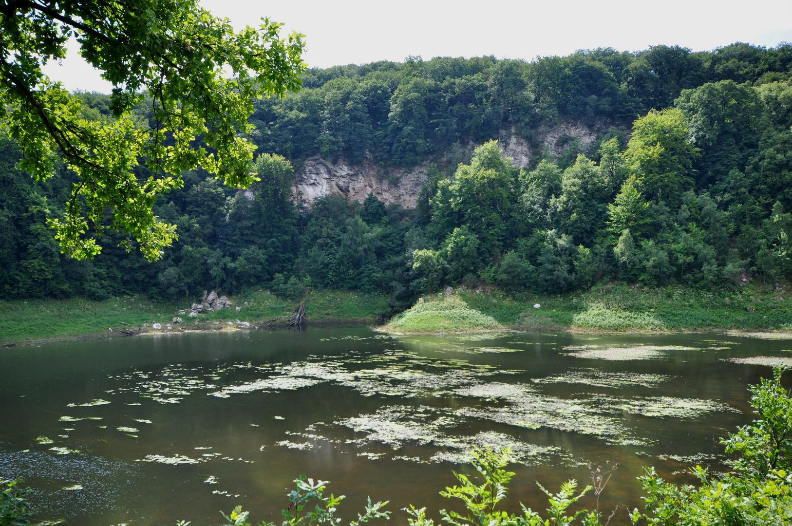 Karstwanderweg 105 Gipsabbruchkante am Bauerngraben und Periodischer See