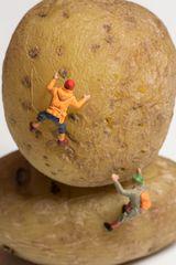 Kartoffelhelden