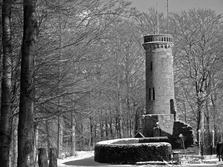 Kassel - Wilhelmshöhe 40