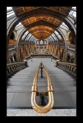 Kathedrale der Naturwissenschaften