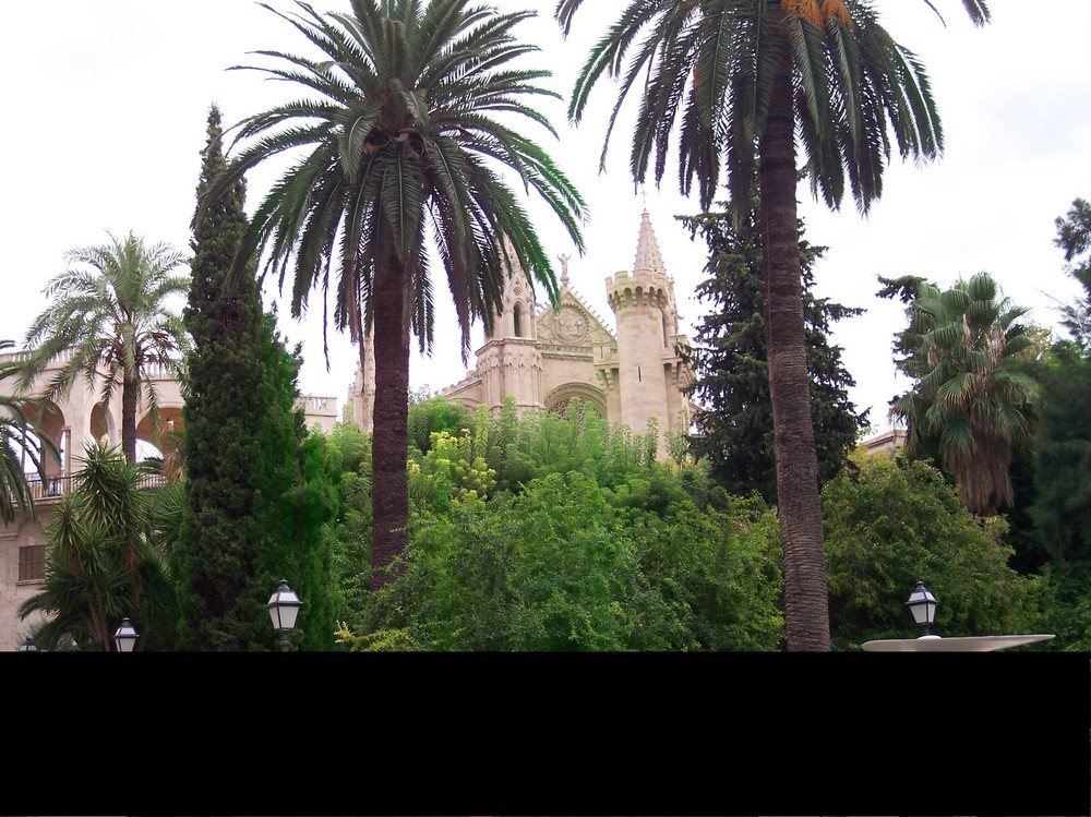 Kathedrale vom Palma