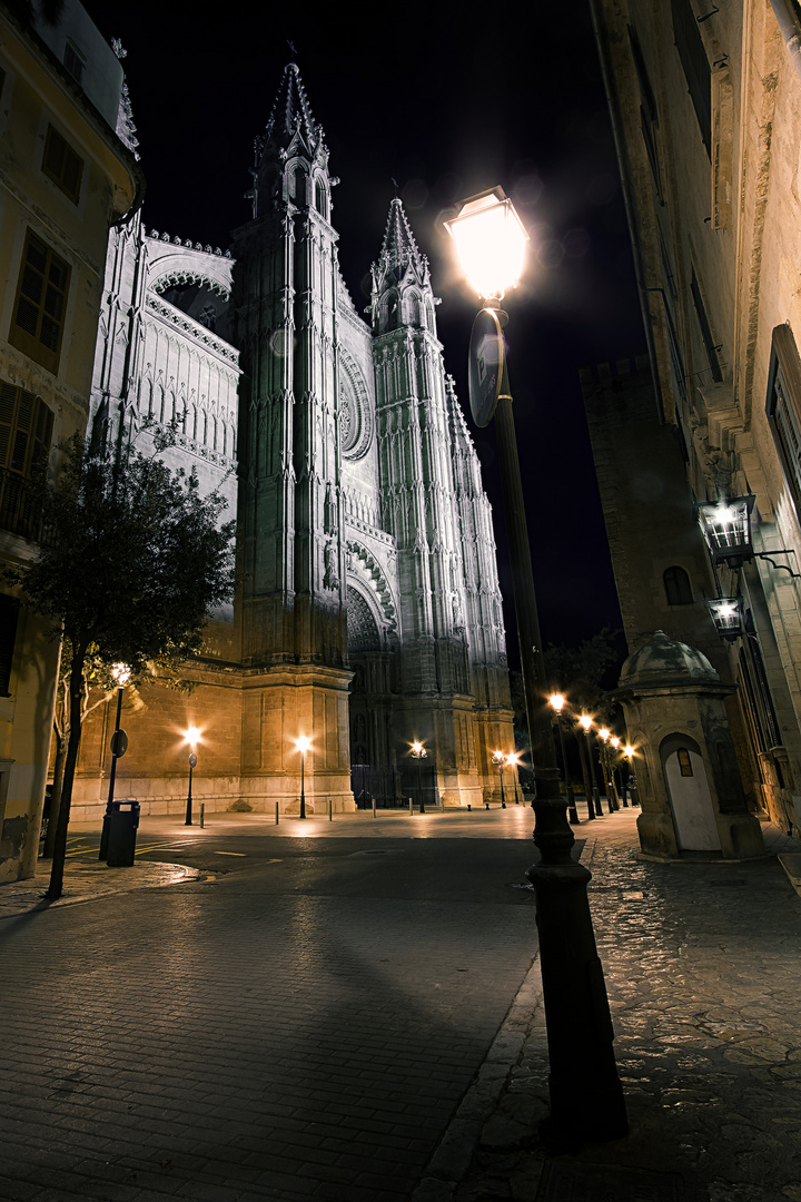 Kathetrale Palma
