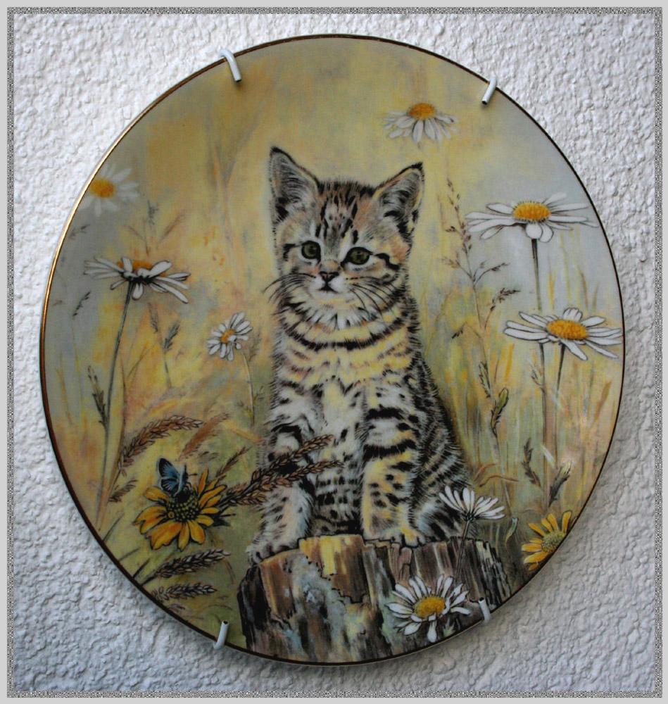 Katzen - Wandschmuck
