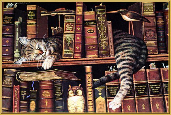 Katzenbibliothek