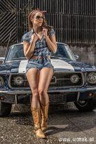 Katzi van Katz und der Mustang - Teil 2