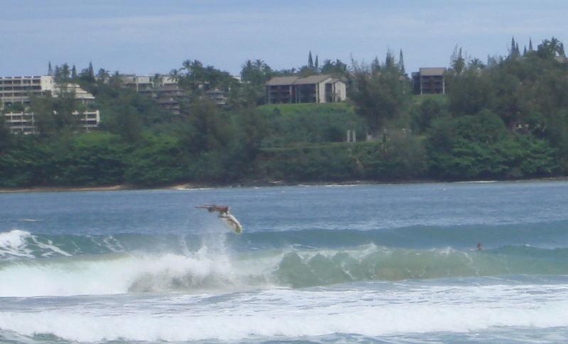Kauai, Hawaii Marz 2007