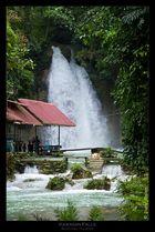 Kawasan Falls, Cebu/Philippinen 2011