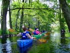 Kayaking on Mysla river