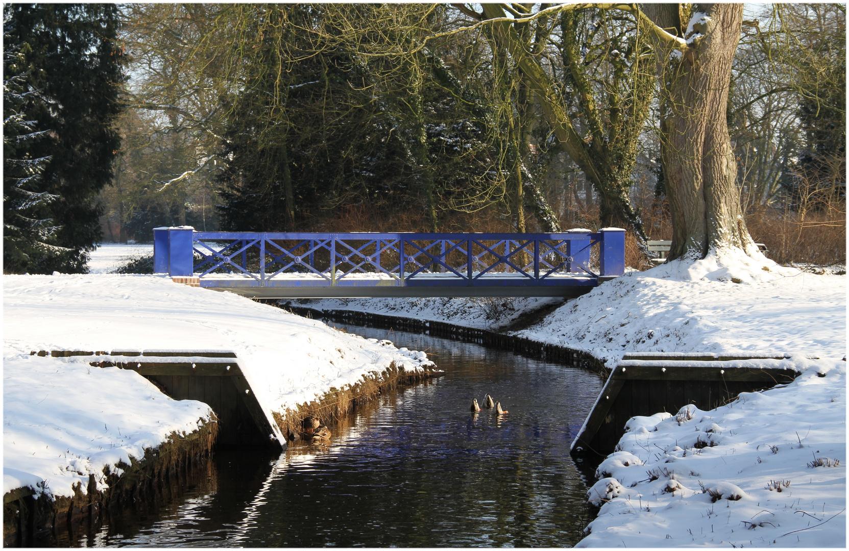kein blaues Wunder ... der Winter in Oldenburg