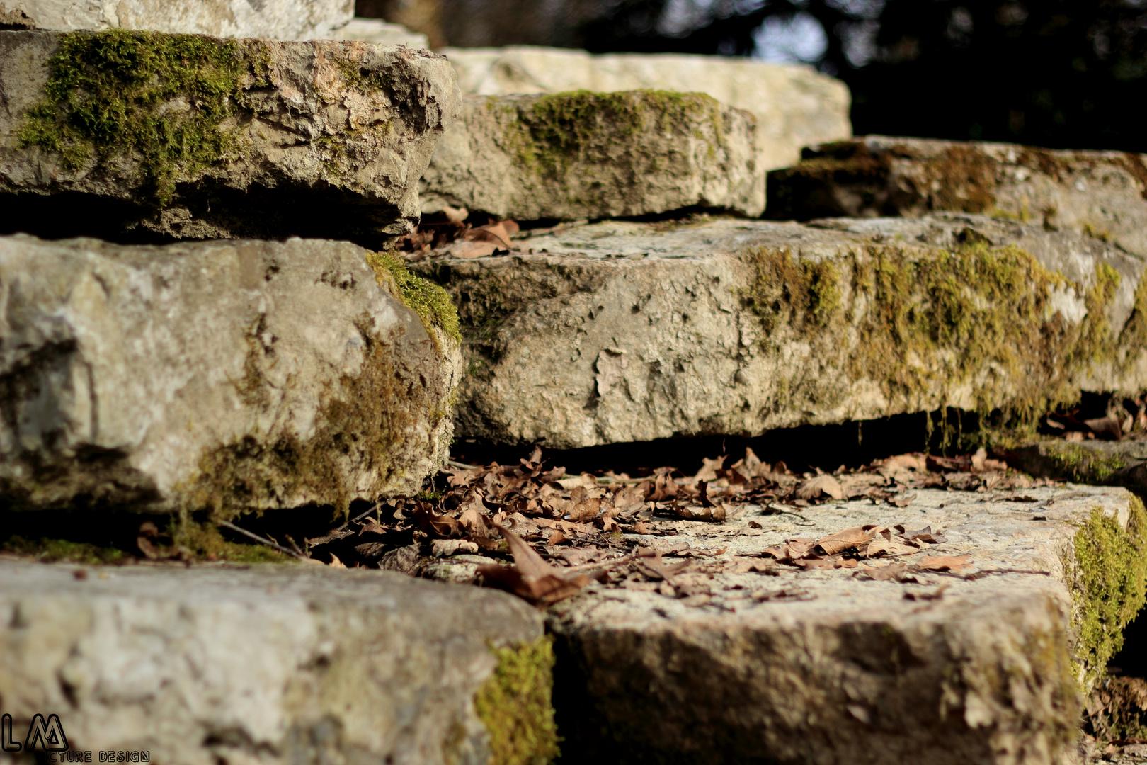 kein Stein bleibt verschont