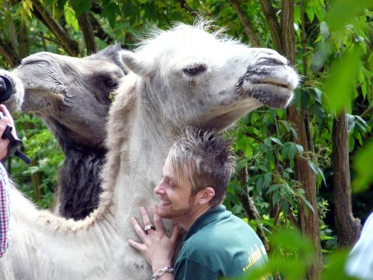 Keine Angst vor großen Tieren...