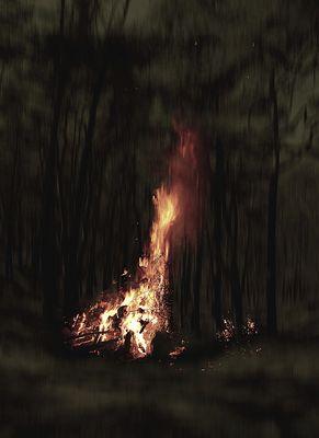Keine Waldbrandgefahr