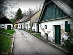 Kellergasse im Weinviertel (1) ...