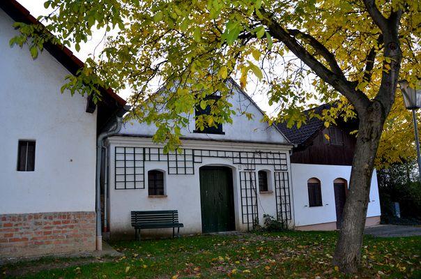 Kellergasse in Altenmarkt - 5